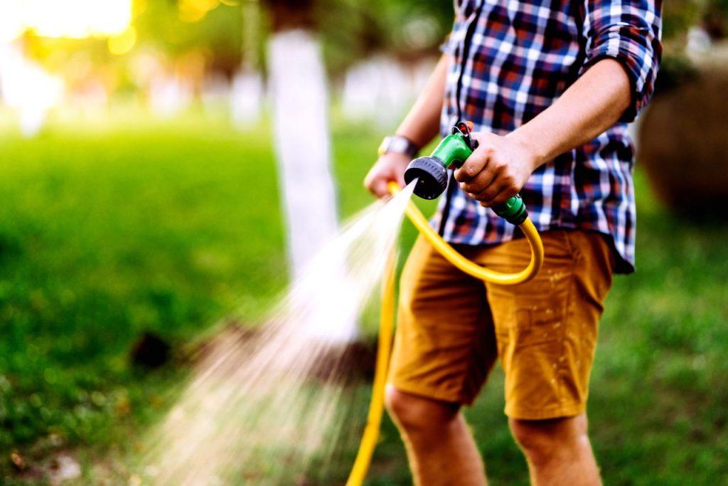 arroser le sol avant de planter pelouse